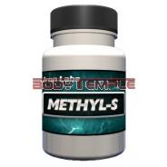 Methyl-S